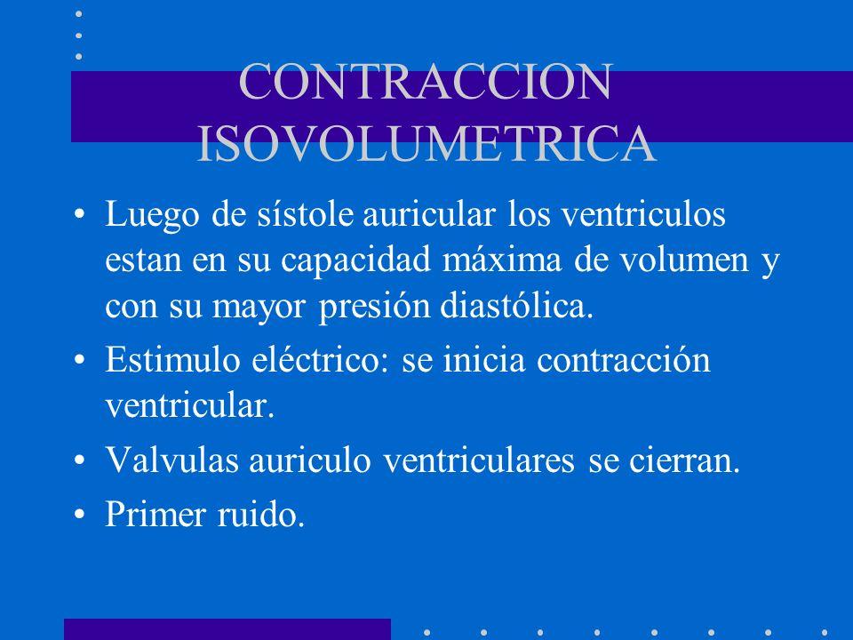 CONTRACCION ISOVOLUMETRICA