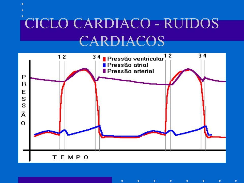 CICLO CARDIACO - RUIDOS CARDIACOS