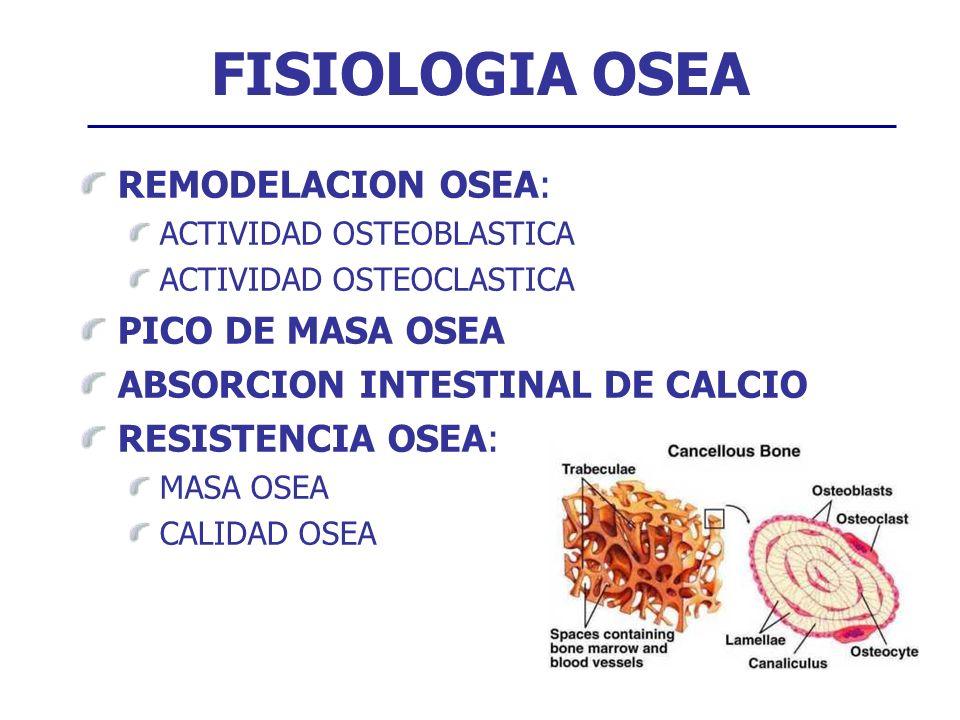 FISIOLOGIA OSEA REMODELACION OSEA: PICO DE MASA OSEA