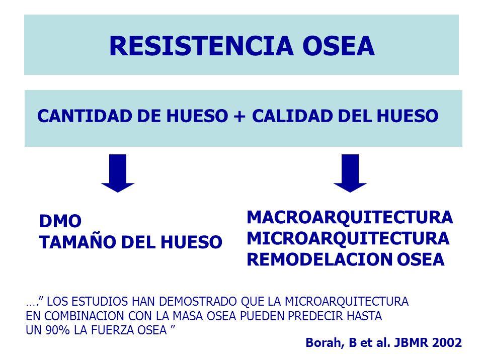CANTIDAD DE HUESO + CALIDAD DEL HUESO