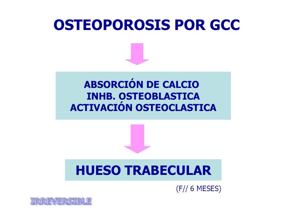 ACTIVACIÓN OSTEOCLASTICA