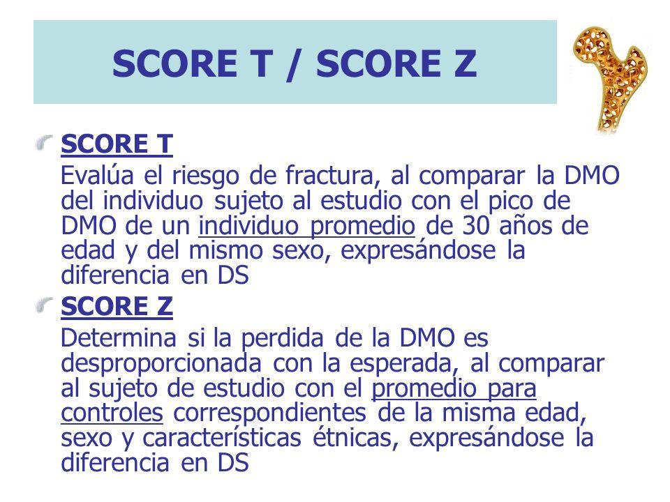SCORE T / SCORE ZSCORE T.