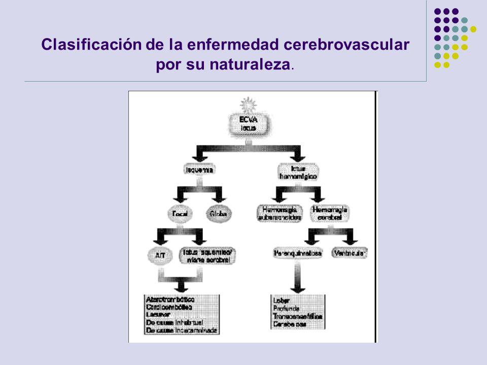 Clasificación de la enfermedad cerebrovascular por su naturaleza.