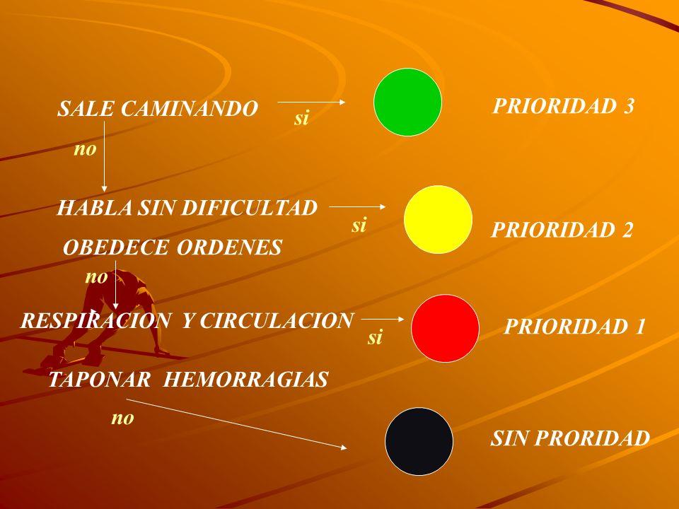 SALE CAMINANDO PRIORIDAD 3. si. no. HABLA SIN DIFICULTAD. si. PRIORIDAD 2. OBEDECE ORDENES. no.