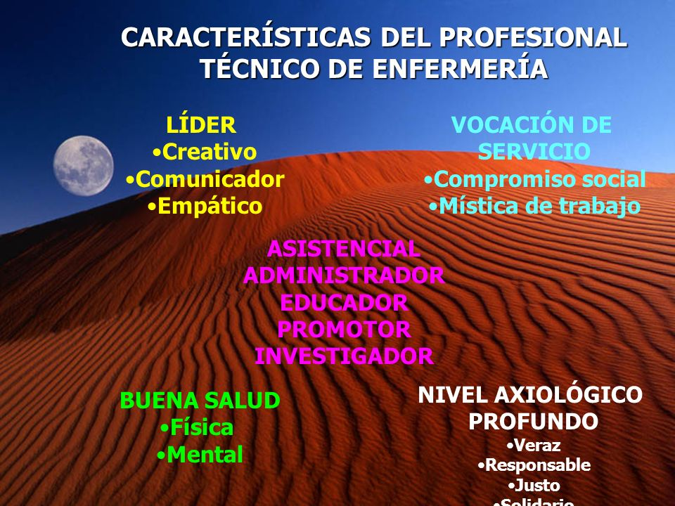 CARACTERÍSTICAS DEL PROFESIONAL