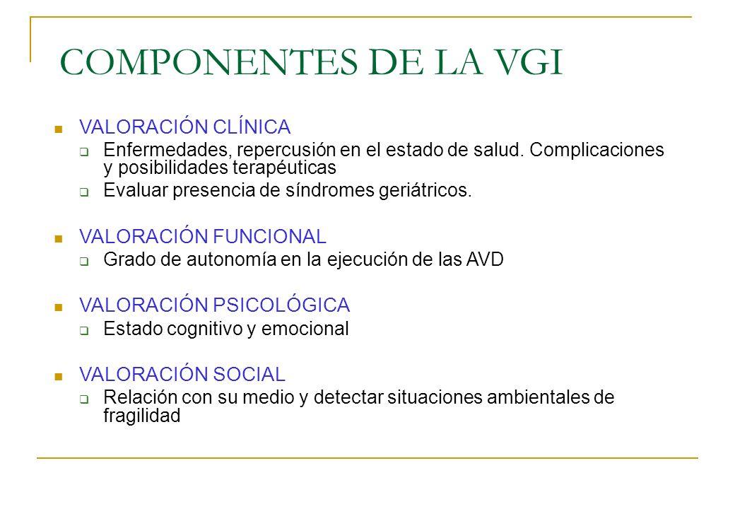 COMPONENTES DE LA VGI VALORACIÓN CLÍNICA VALORACIÓN FUNCIONAL