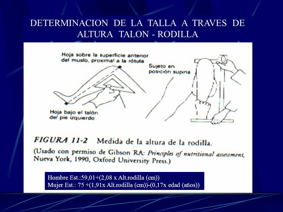 DETERMINACION DE LA TALLA A TRAVES DE