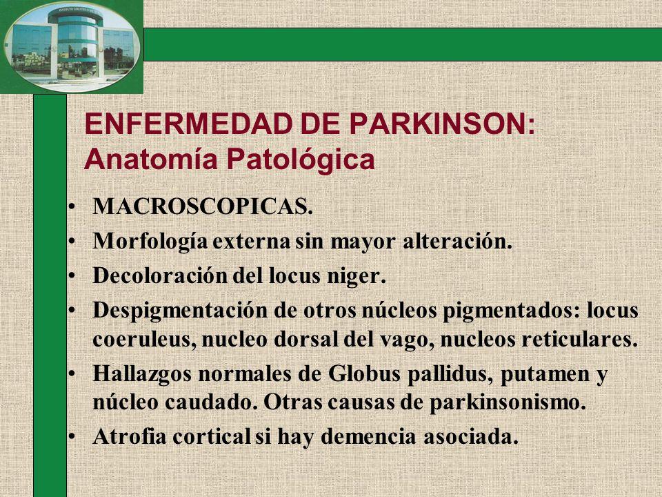 ENFERMEDAD DE PARKINSON: Anatomía Patológica