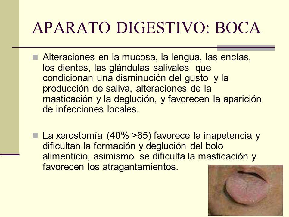 APARATO DIGESTIVO: BOCA