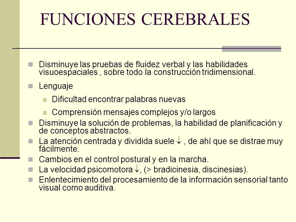 FUNCIONES CEREBRALES Disminuye las pruebas de fluidez verbal y las habilidades visuoespaciales , sobre todo la construcción tridimensional.