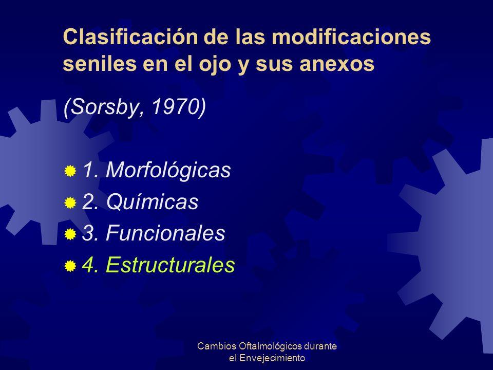 Clasificación de las modificaciones seniles en el ojo y sus anexos