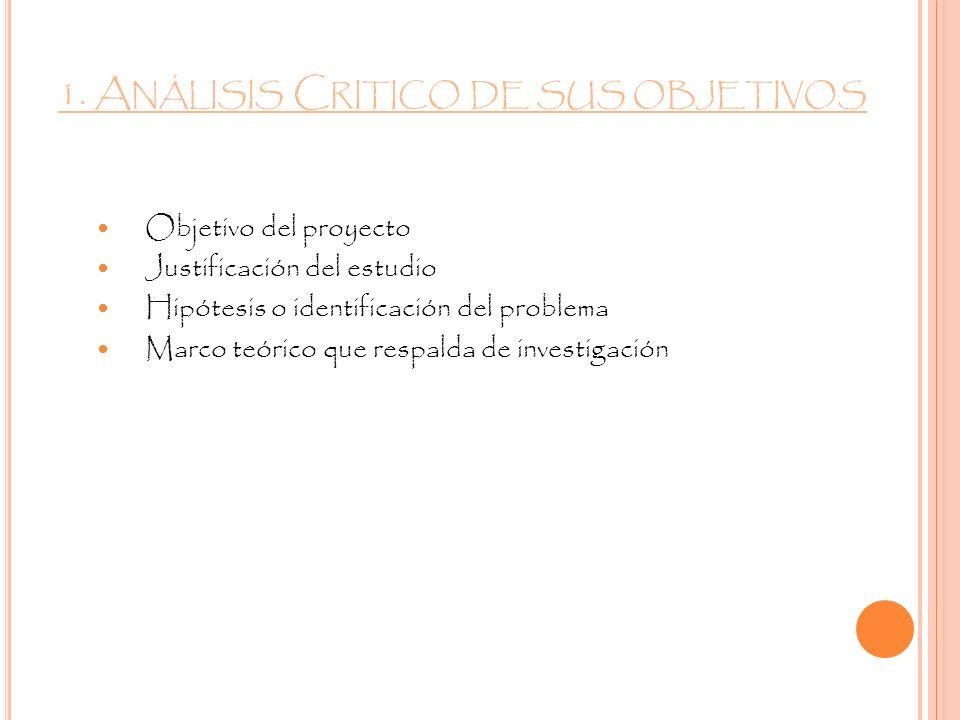 1. Análisis Critico de sus objetivos