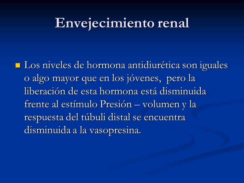 Envejecimiento renal