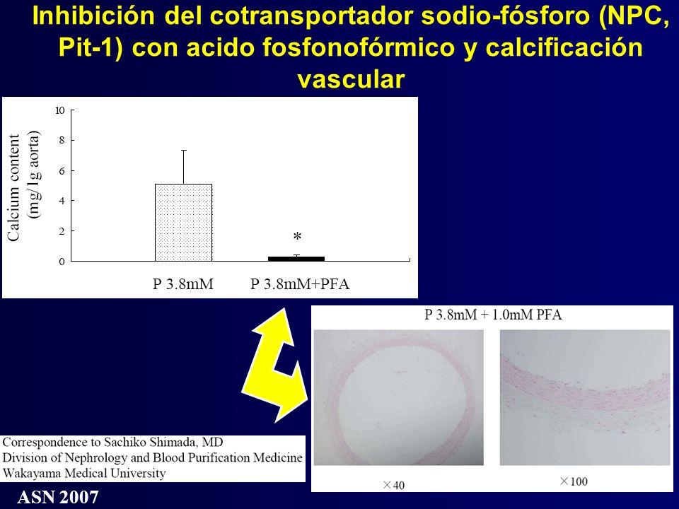 Inhibición del cotransportador sodio-fósforo (NPC, Pit-1) con acido fosfonofórmico y calcificación vascular