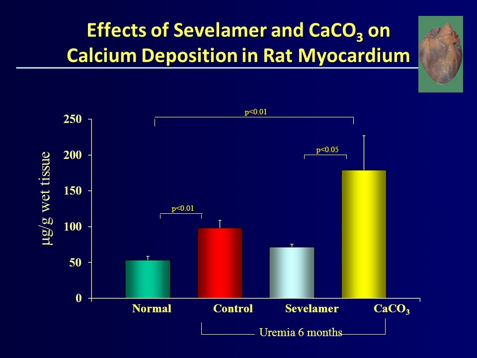 Effects of Sevelamer and CaCO3 on Calcium Deposition in Rat Myocardium