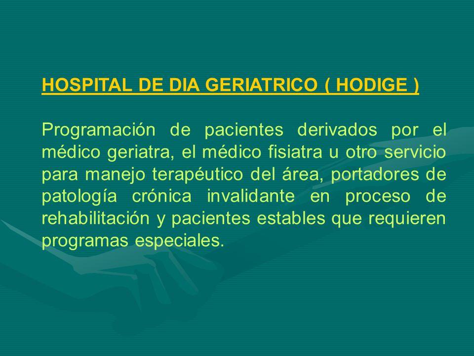 HOSPITAL DE DIA GERIATRICO ( HODIGE )