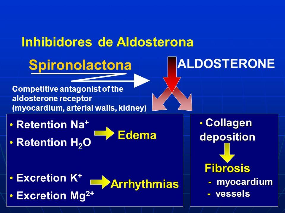 - Spironolactona Inhibidores de Aldosterona ALDOSTERONE Edema Fibrosis
