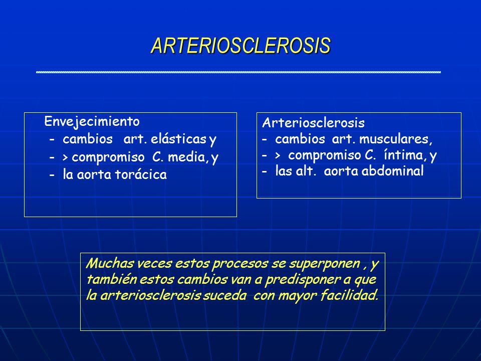 ARTERIOSCLEROSIS Envejecimiento - cambios art. elásticas y