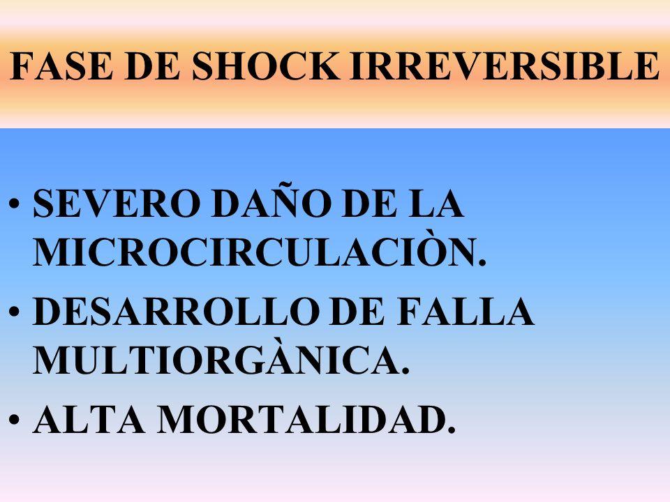 FASE DE SHOCK IRREVERSIBLE