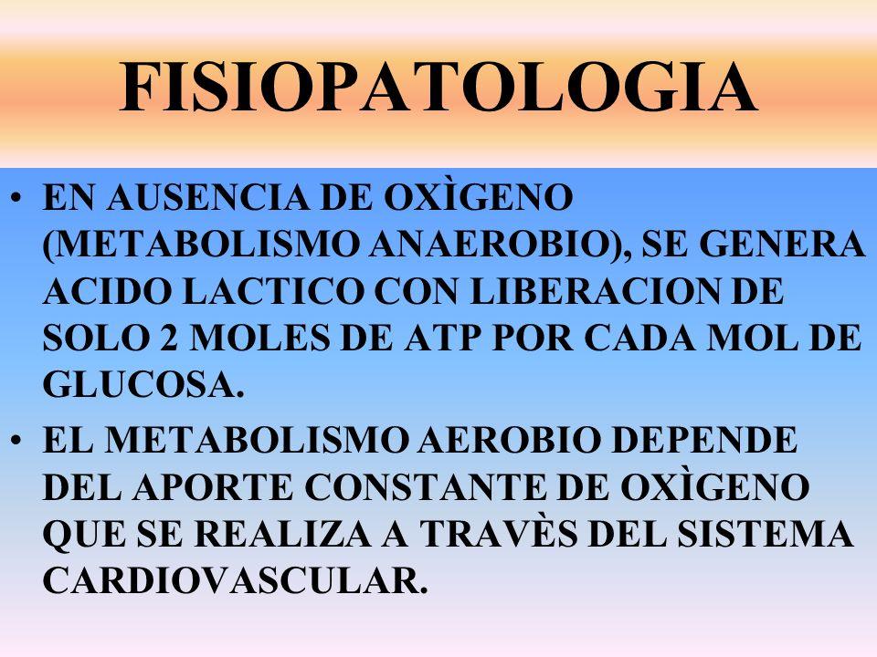 FISIOPATOLOGIA EN AUSENCIA DE OXÌGENO (METABOLISMO ANAEROBIO), SE GENERA ACIDO LACTICO CON LIBERACION DE SOLO 2 MOLES DE ATP POR CADA MOL DE GLUCOSA.