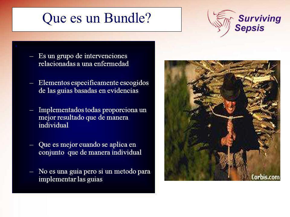 SSC September 2005. Que es un Bundle Es un grupo de intervenciones relacionadas a una enfermedad.