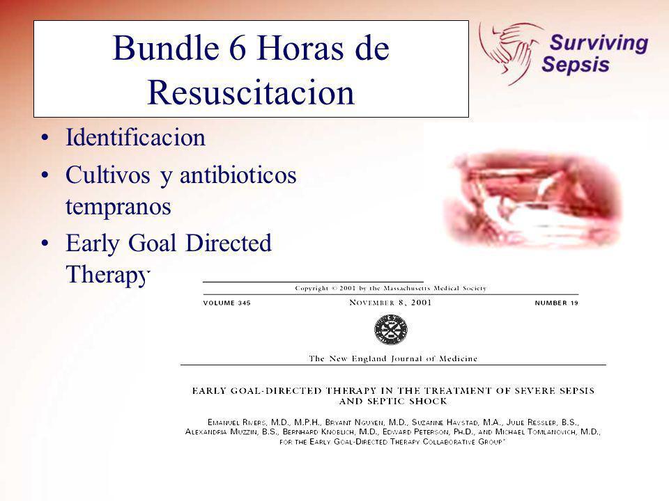 Bundle 6 Horas de Resuscitacion