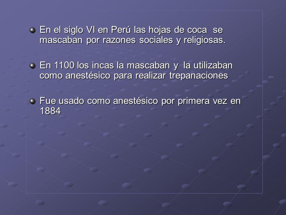 En el siglo VI en Perú las hojas de coca se mascaban por razones sociales y religiosas.