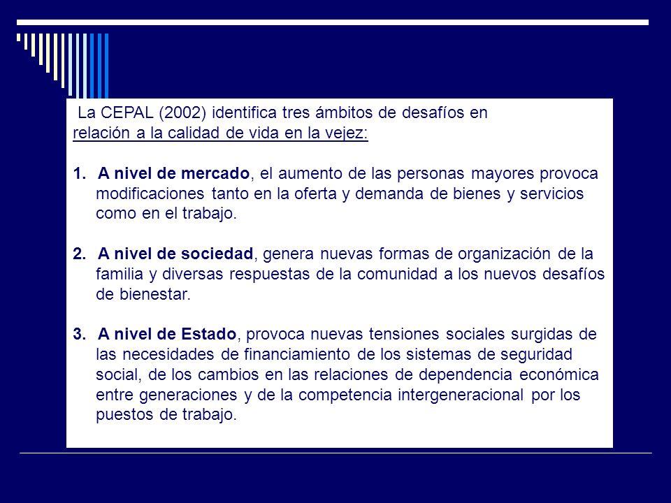 La CEPAL (2002) identifica tres ámbitos de desafíos en