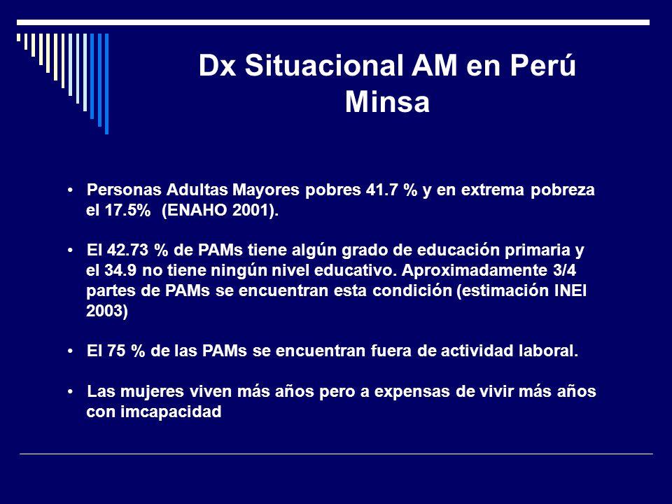 Dx Situacional AM en Perú Minsa