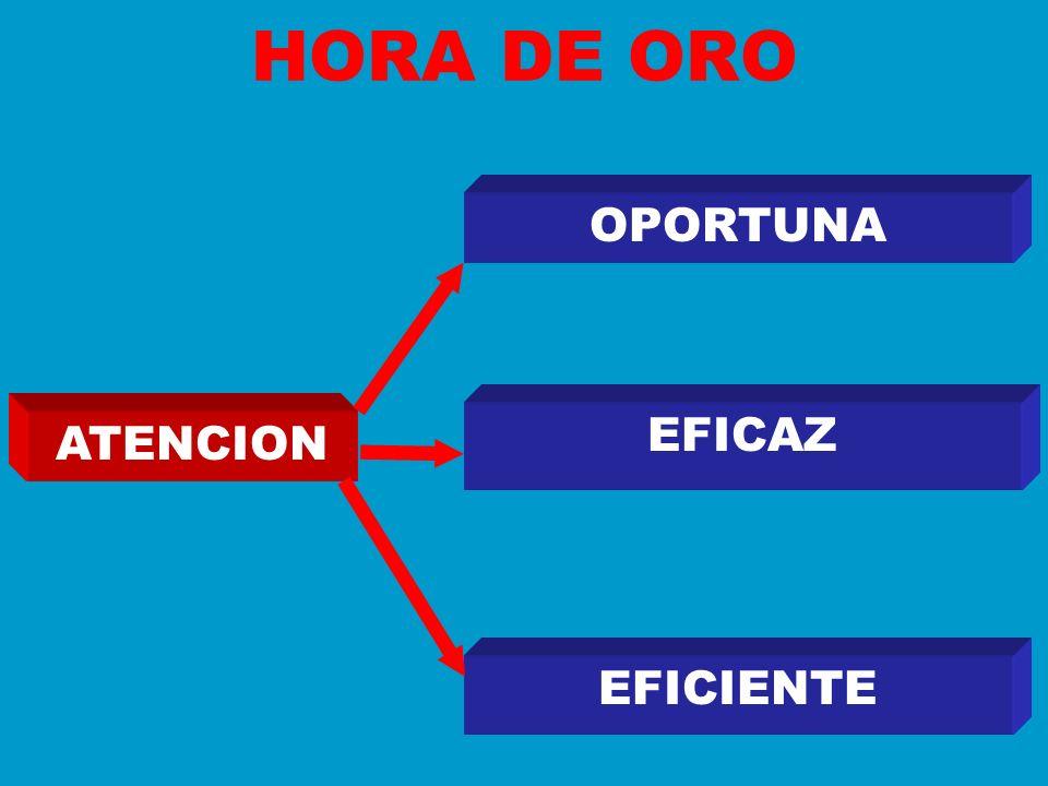 HORA DE ORO OPORTUNA EFICAZ ATENCION EFICIENTE