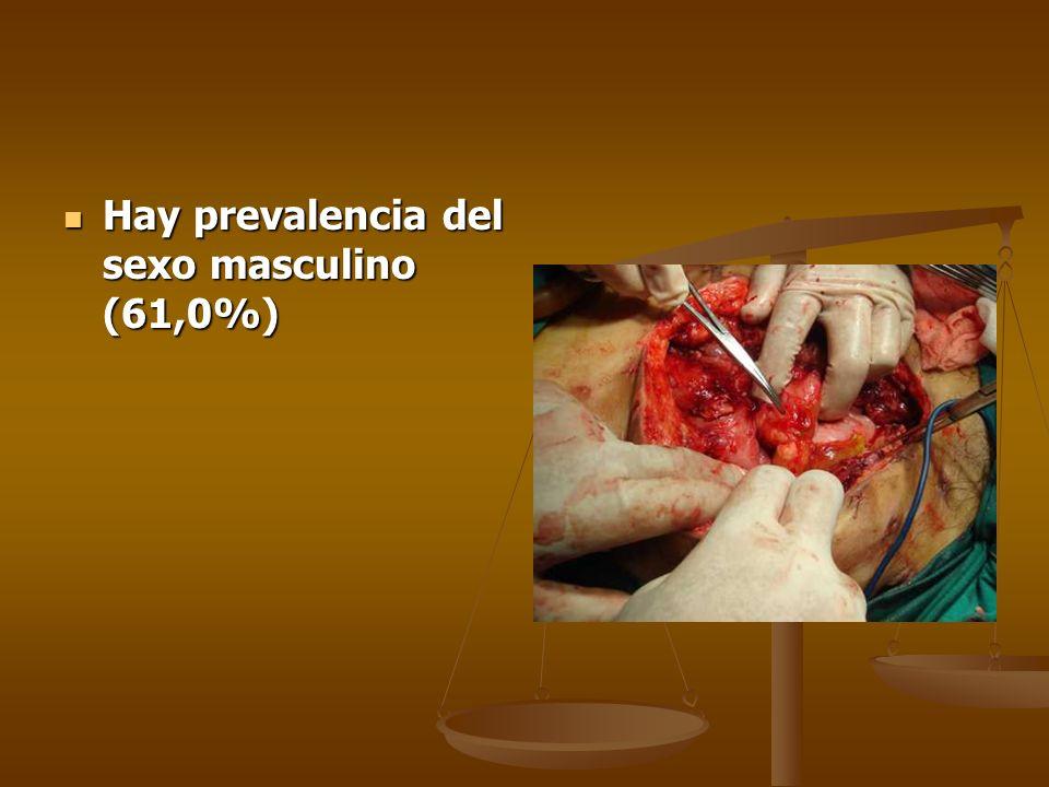 Hay prevalencia del sexo masculino (61,0%)