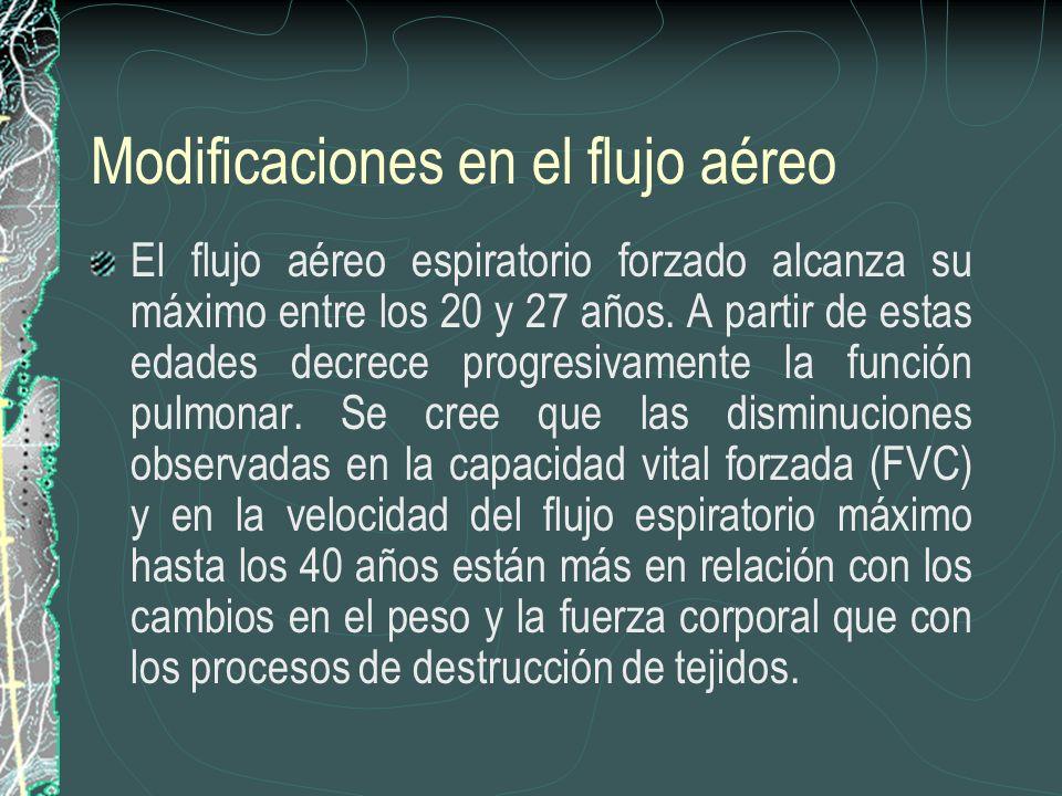 Modificaciones en el flujo aéreo
