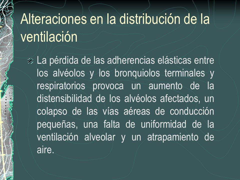 Alteraciones en la distribución de la ventilación