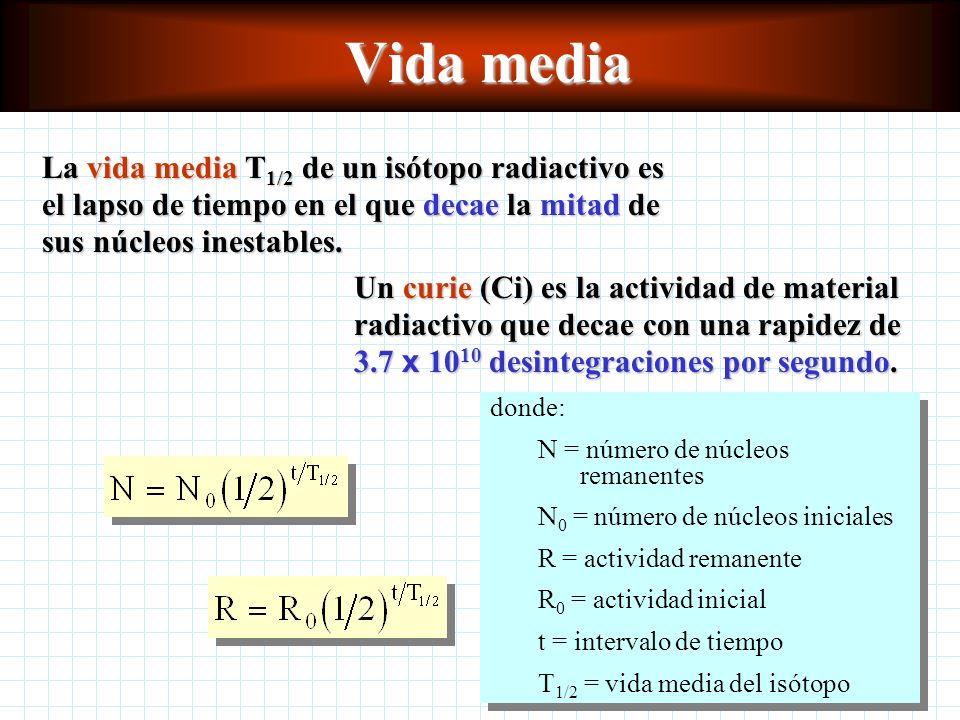 Vida media La vida media T1/2 de un isótopo radiactivo es el lapso de tiempo en el que decae la mitad de sus núcleos inestables.