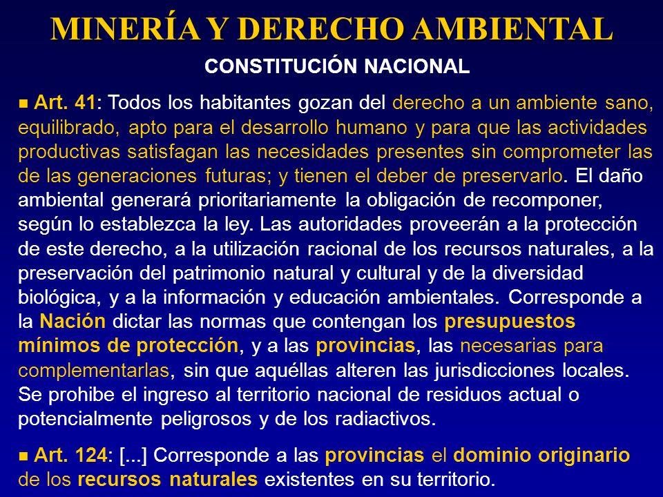 MINERÍA Y DERECHO AMBIENTAL CONSTITUCIÓN NACIONAL