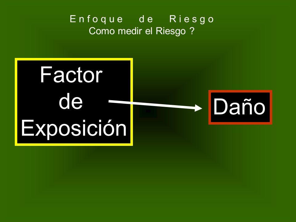 Factor de Exposición Daño E n f o q u e d e R i e s g o
