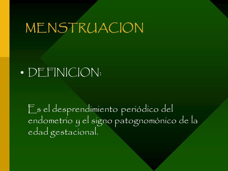 MENSTRUACION DEFINICION: