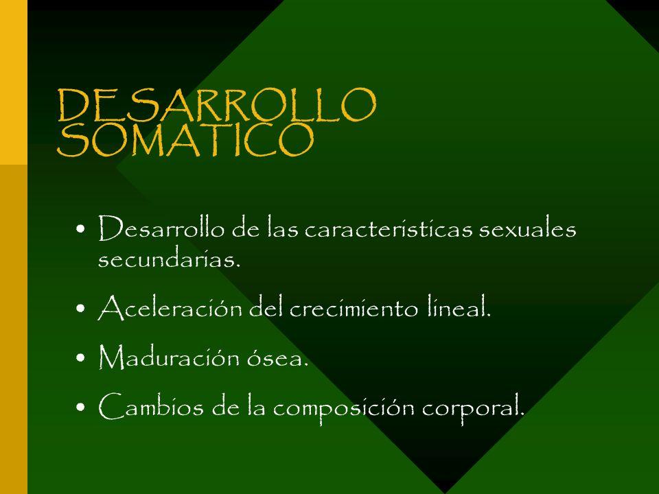 DESARROLLO SOMATICODesarrollo de las caracteristicas sexuales secundarias. Aceleración del crecimiento lineal.