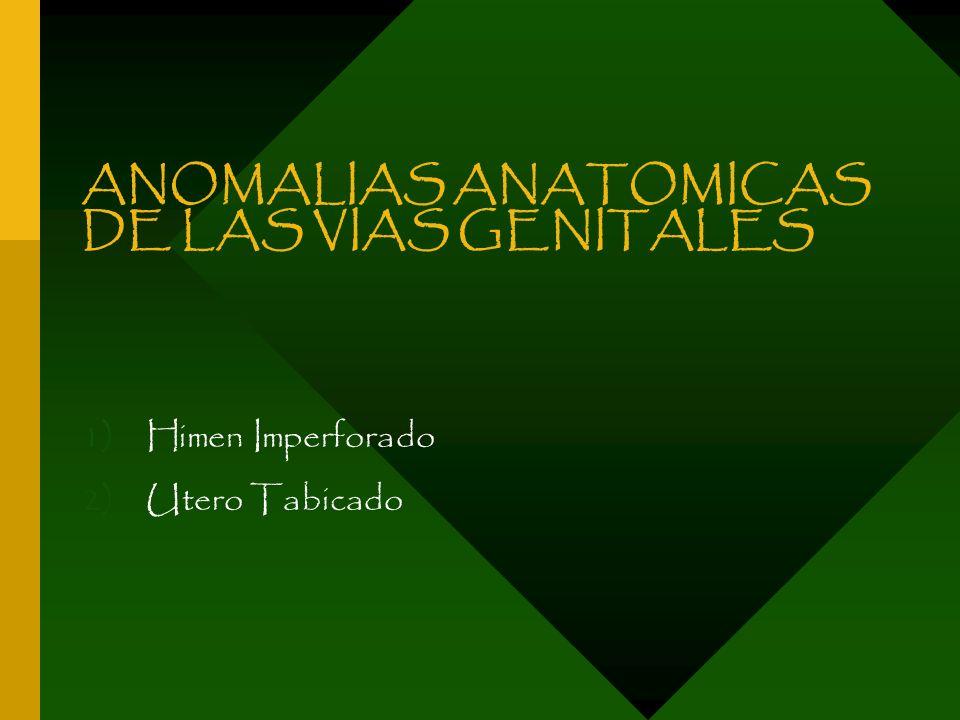ANOMALIAS ANATOMICAS DE LAS VIAS GENITALES