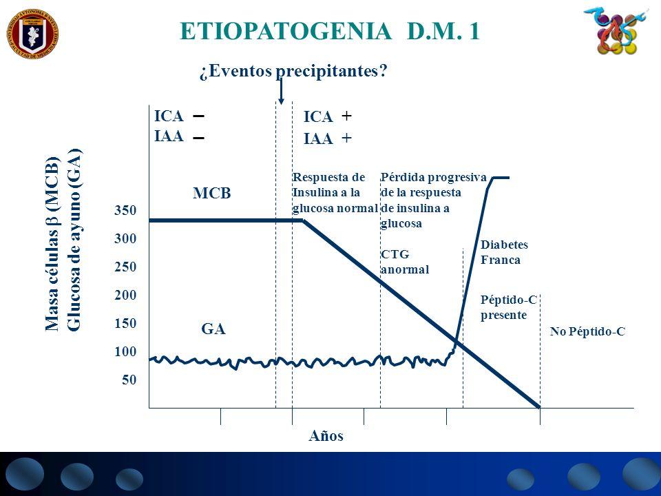ETIOPATOGENIA D.M. 1 ¿Eventos precipitantes Masa células  (MCB)
