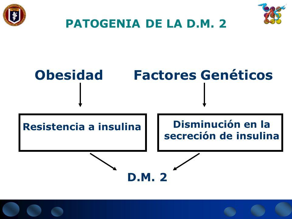 Obesidad Factores Genéticos