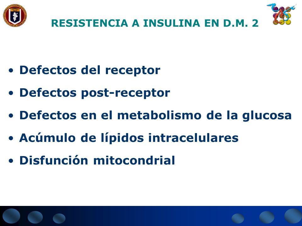RESISTENCIA A INSULINA EN D.M. 2