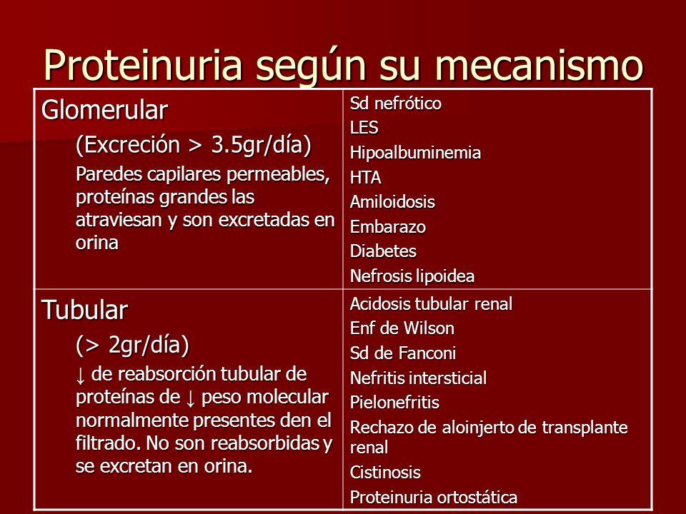Proteinuria según su mecanismo