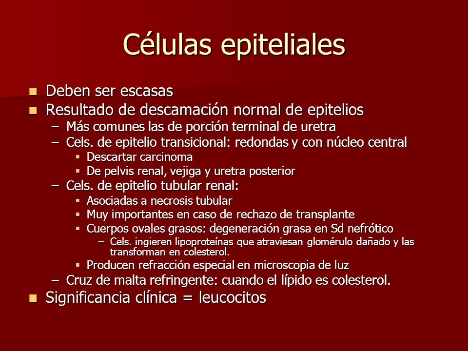 Células epiteliales Deben ser escasas