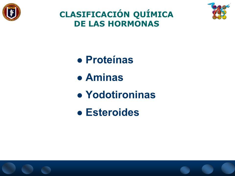 CLASIFICACIÓN QUÍMICA DE LAS HORMONAS