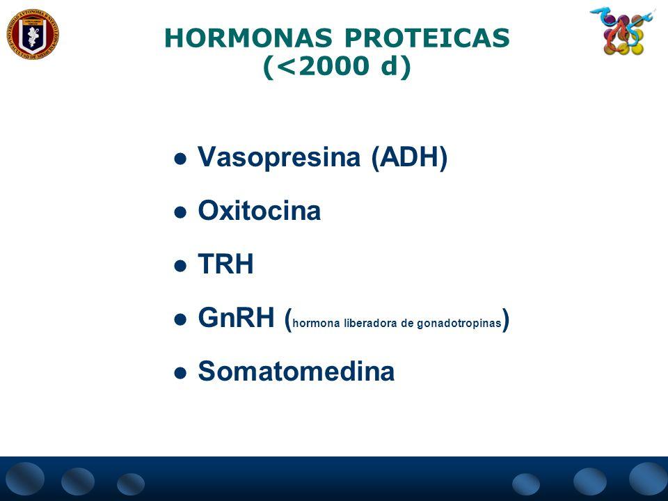 HORMONAS PROTEICAS (<2000 d)