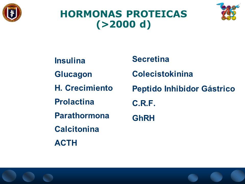HORMONAS PROTEICAS (>2000 d)
