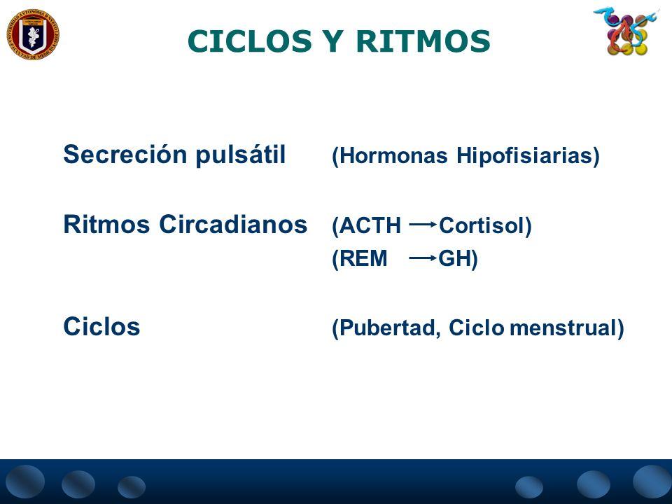 CICLOS Y RITMOS Secreción pulsátil (Hormonas Hipofisiarias)