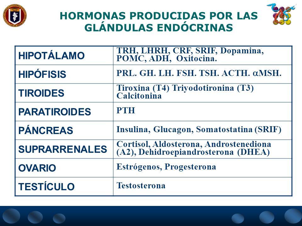 HORMONAS PRODUCIDAS POR LAS