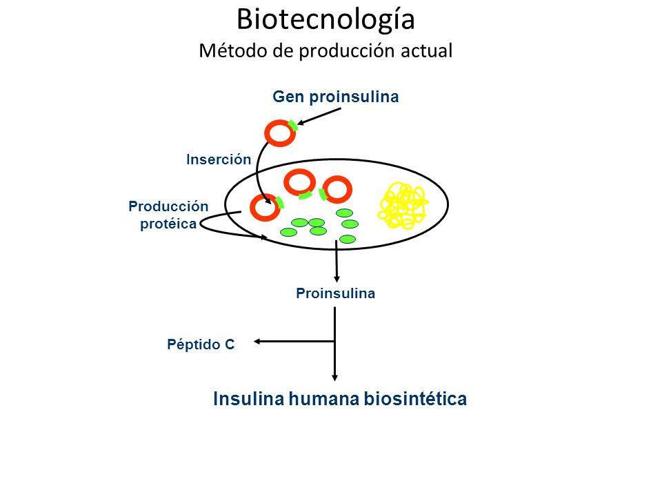Biotecnología Método de producción actual